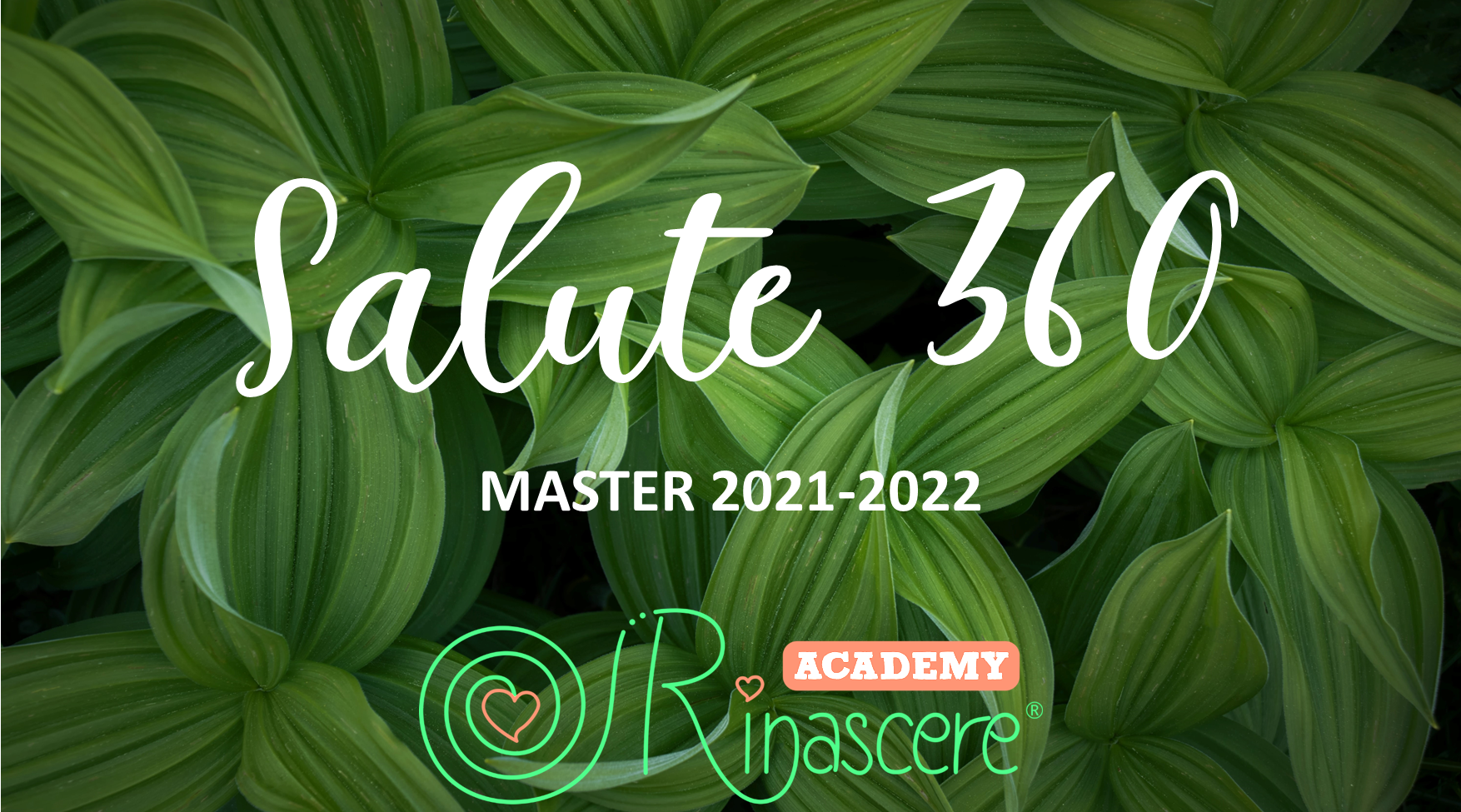 MASTER SALUTE 360